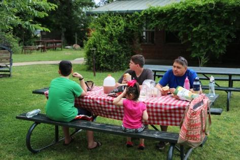 memphis-picnic-lunch-fam