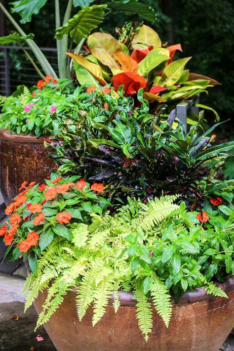 Get great inspiration from the many beautiful planters at the Atlanta Botanical Garden