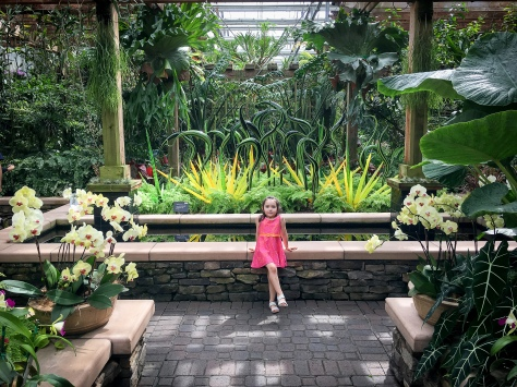 Stepping into the Fuqua Orchid Garden is like stepping into a tropical paradise!