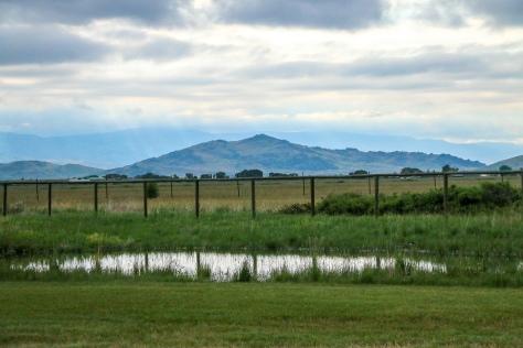 Wyoming-towardsgrandtetons-5kidsandarv-6R