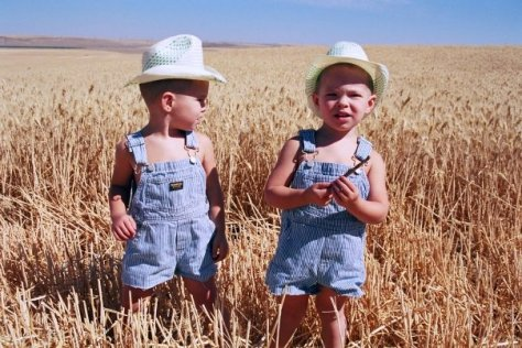 Twins in Wheat copyright 5kidsandarv