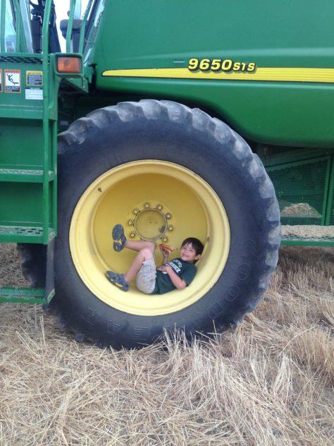 lunch-break-combine-tire-wheat-harvest